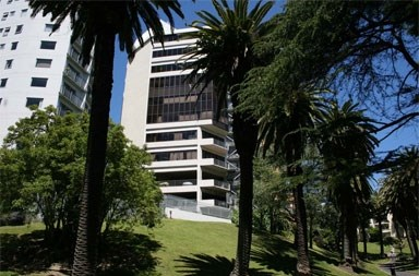 LSI - Auckland