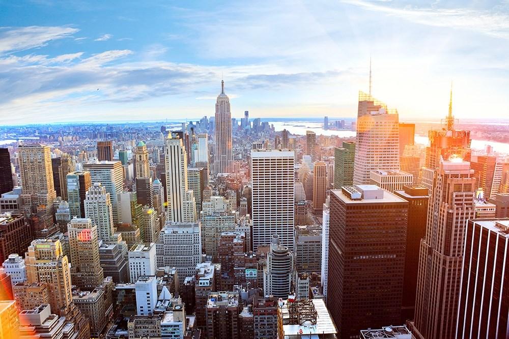 ZONI-New York